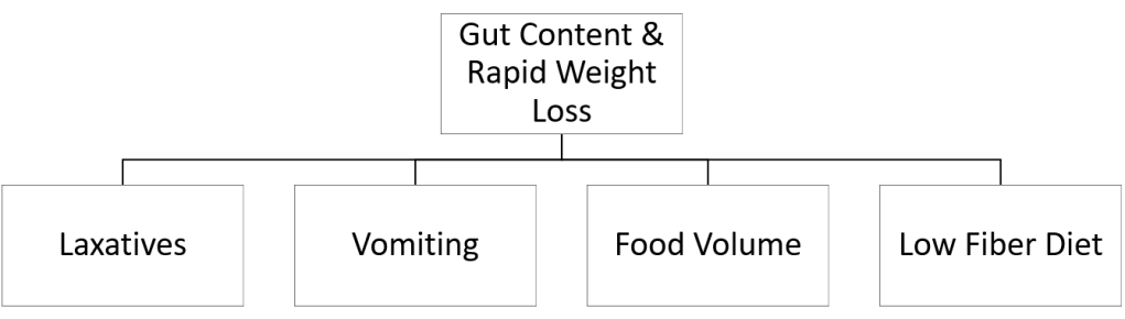 Gut Content and Rapid Weight Loss