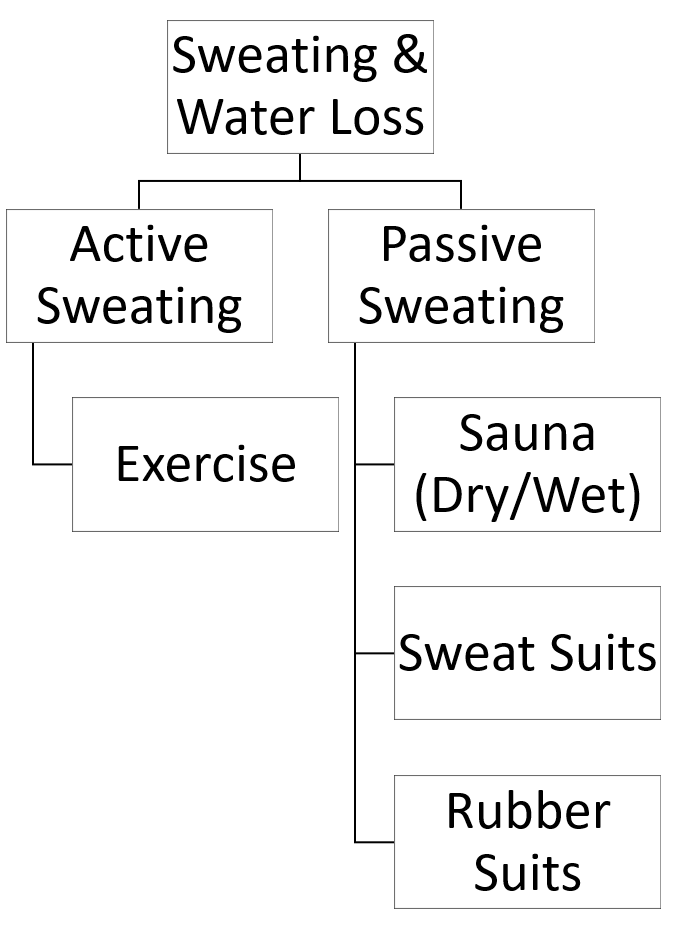 Sweating and Water Loss